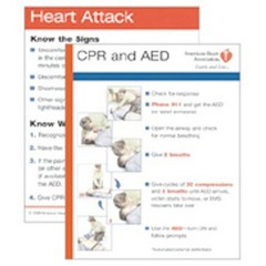 american red cross cpr guidelines