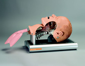 The Ambu® Intubation Trainer