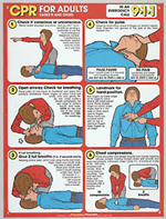 CPR Charts/ Posters